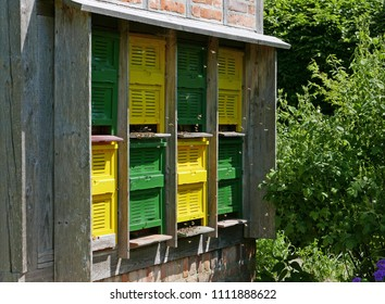 Bees flying in and out colorful doors of their hive