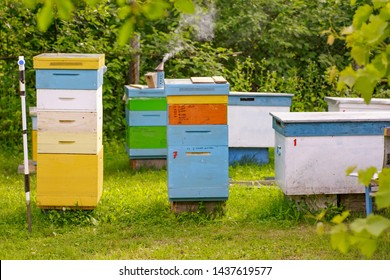 Bees at old hive entrance. Bees returning from honey collection to yellow hive. Bees at entrance. Honey-bee colony guards hive from looting honeydew. bees return to beehive after honeyflow. Copy space