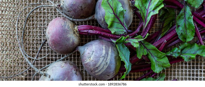 Beetroot vegetables. Horizontal flat lay on rustic kitchen with canvas bag