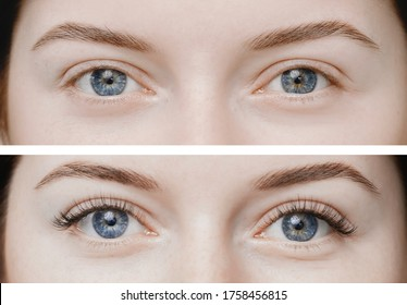 Before and after eyelash extension procedure. Beautiful and expressive eyes of young woman with fake long lashes.
