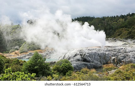 Before eruption - Te Puia geothermal valley - New Zealand