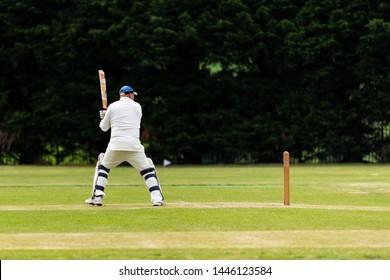 images?q=tbn:ANd9GcQh_l3eQ5xwiPy07kGEXjmjgmBKBRB7H2mRxCGhv1tFWg5c_mWT Best Of 3d Cricket Games Online Free Play 2015 @koolgadgetz.com.info