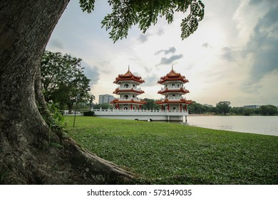 Behind the tree of the twin pagoda, Singapore chinese garden