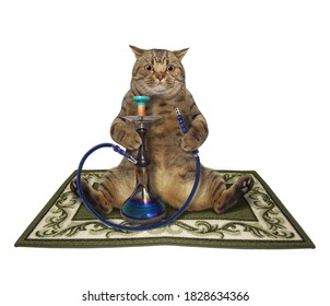 A beige big eyed cat is smoking a hookah on a square carpet. White background. Isolated.