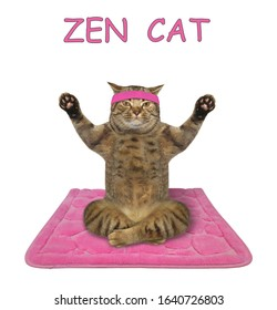 The beige cat athlete in a sport headband is doing yoga exercises on a pink fitness mat. White background. Isolated.