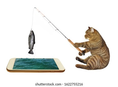 The beige cat fisher with a rod is sitting and fishing in the phone. He caught a big fish. White background. Isolated.
