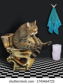 The beige cat is sitting on a gold toilet bowl in the bathroom. Rolls of toilet paper are next to him.