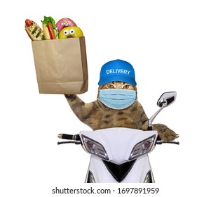The beige cat in a surgical protection face mask delivers groceries in a paper bag on a moped. Coronavirus. White background. Isolated.