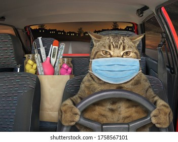 The beige cat in a surgical protection face mask is driving a red car on the highway at night. A paper bag with medicines and medical instruments is next to him.