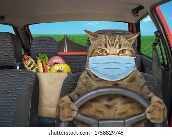 The beige cat in a surgical protection face mask is driving a red car on the highway. A paper bag with food is next to him.