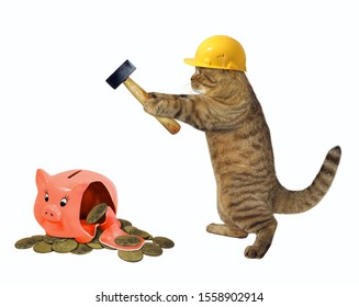 The beige cat in a yellow safety helmet with a hammer is near a broken piggy bank with coins. White background. Isolated.
