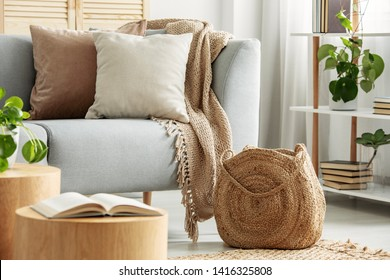 Beige cushions on gray couch in modern living room
