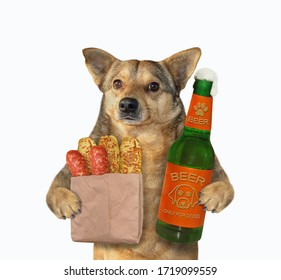 The beige dog is holding a opened bottle of beer and a paper bag with sausage and cheese breads. White background. Isolated.