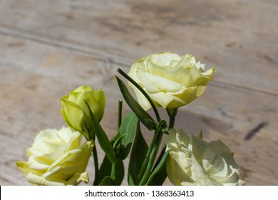 beige eustoma flowers (prairie gentian, lisianthus) on wooden background. Beautiful floral mockup. Space for your text.