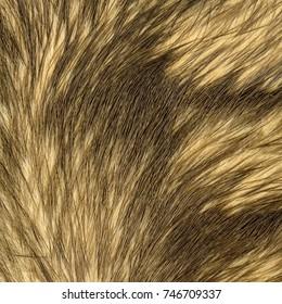 beige fox fur texture as background