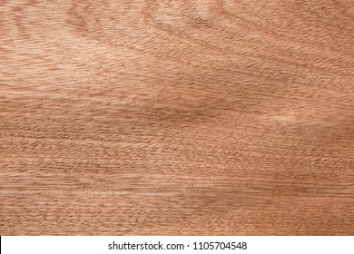 Beige sapele veneer texture for your stylish project. High resolution photo.
