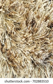 Beige shaggy carpet closeup