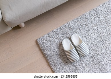 Beige Slipper on carpet at home