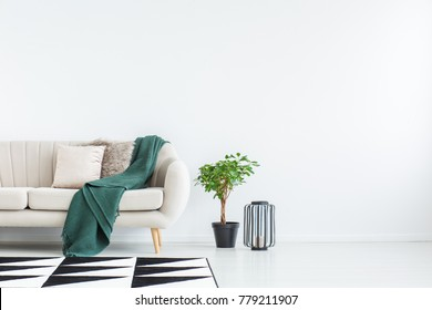 Beige sofa with green blanket and cushions standing against white, empty wall in minimalistic living room