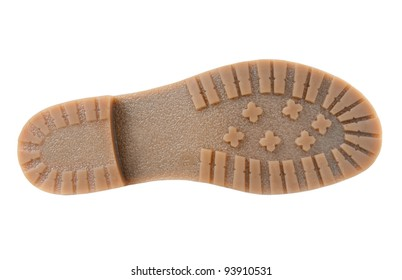 Beige sole isolated on white background