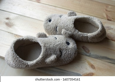 beige warm teddy bear slippers stand on wooden floor