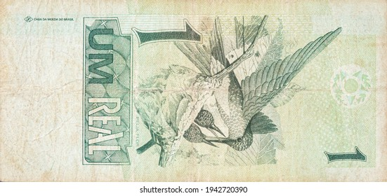 Beija flor hummingbird or colibri depicted on old one real note Brazilian money. Back side green bill