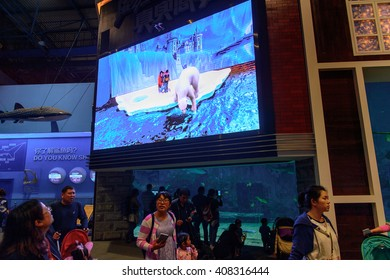 BEIJING, CHINA - APR 5, 2016: Interior of The Beijing Aquarium, part of the Beijing Zoo. It was opened to the public in 1999. It is the biggest aquarium in China.