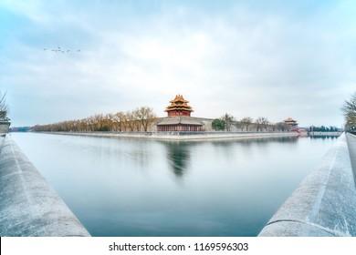 Beijing, China, the Forbidden City turret bird scenery