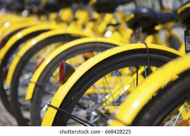 BEIJING, CHINA -June 27,2017:Applied to Internet payment technology, sharing bike becomes China's new mode of transportation. Shared bicycles on street parking . June 27 , 2017 in Beijing, China.