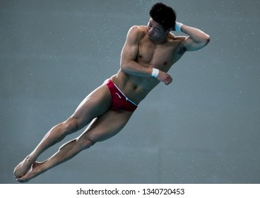 Beijing, China - MARCH 9, 2019: Yang Jian (杨健)of China compete in the Men's 10m Platform Final during day three of the FINA/CNSG Diving World Series 2019 Beijing Station at the National aquatics cente