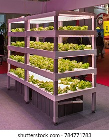 BEIJING, CHINA-APRIL 22, 2017: Vegetables in a vertical farming system by shelving units with LED lights are on display at the Sanan Sino-Science booth at the China International Exhibition Center