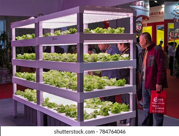 BEIJING, CHINA-APRIL 22, 2017: Visitors are seen around vegetables in a vertical farming by shelving units with LED lights on display at the China International Exhibition Center