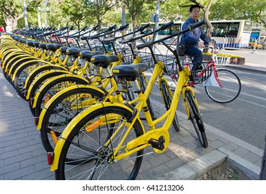 BEIJING, CHINA-MAY 5, 2017: A man rides a bicycle next to a row of parked Ofo bicycles. Ofo, a bike-sharing company founded in 2014, has over 20 million registered users