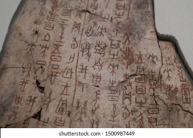 BEIJING - February 12 : Oracle characters on February 12, 2017 in Beijing, China.  Oracle characters carved on tortoise shells during the Yin Shang period in ancient China.