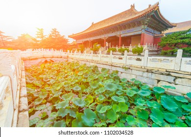 Jinshui Images Stock Photos Vectors Shutterstock