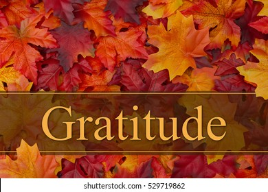 Being grateful message, Some fall leaves with text Gratitude