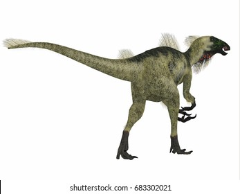 Beipiaosaurus Dinosaur Tail 3d illustration - Beipiaosaurus was a herbivorous theropod dinosaur that lived in China in the Cretaceous Period.