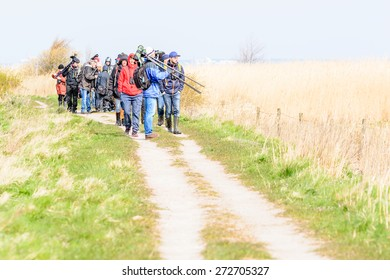 BEJERSHAMN, SWEDEN - APRIL 25, 2015: Birdwatchers looking after migratory birds in wetland as they arrive in early spring. Bejershamn is a protected wildlife reserve known for its birdlife.