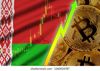 Belarus flag and cryptocurrency growing trend with many golden bitcoins