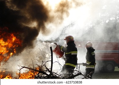 Belarus, Gomel, 04/06/2017, extinguishing forest fire.Belarus, Gomel, 04/06/2017,  .Extinguishing the fire. Firemen are working. Fill the foam with a fire. Resolute firefighters. Fight fire.