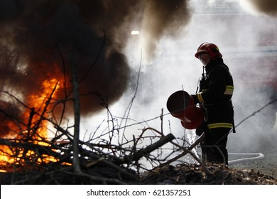 Belarus, Gomel city. Firefighting of the forest 06.04.2017.The fireman extinguishes with a foam forest fire.The brave firefighter. Forest fire. Fight fire