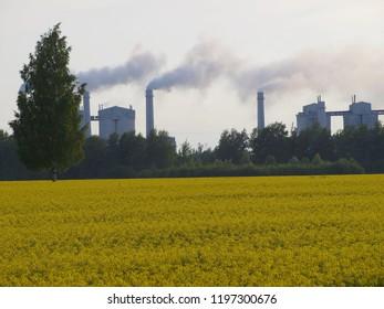 Belarus, Ruba, dolomite plant - neighborhood, 13.07.2017