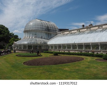 BELFAST, UK - CIRCA JUNE 2018: The Palm House in the Botanic Gardens