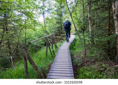 Belgium ,Hohes Venn, 07-07-2019, Tourist hiking on a planked walkway in the German-Belgian Mational Park Hohes Venn