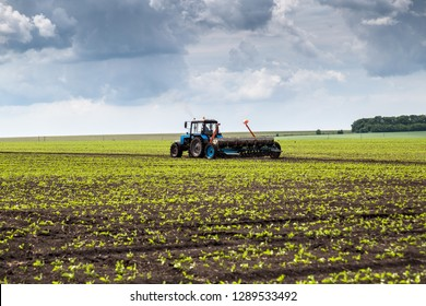 Belgorod region, RUSSIA - May 23, 2018: Agricultural machinery in the spring on the sugar beet field