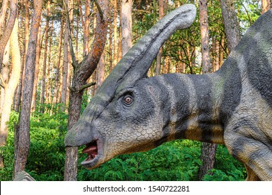 Belgorod, Russia - May 31, 2019: Parasaurolophus in the forest of Belgorod dinopark. Face of herbivorous dinosaur close-up.