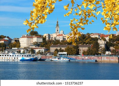 Belgrade, Serbia - capital city view with Sava river. Autumn leaves.