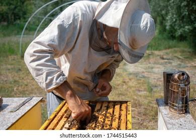 Belgrade, Serbia, May 10, 2020: Beekeeper working on a hive at honey farm