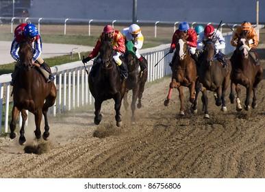 "BELGRADE,SERBIA-OCTOBER 16:Unidentified horses and jockeys in gallop in race""Wretham House"" on October 16, 2011 in Belgrade, Serbia"