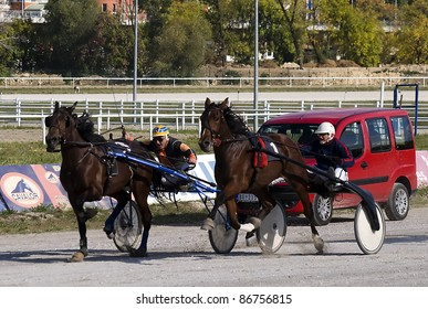 "BELGRADE,SERBIA-OCTOBER 16:Unidentified horses and jockeys just before the finish line in race""Lincesterka"" on October 16, 2011 in Belgrade, Serbia"